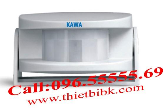 Hong-ngoai-Kawa-D2818