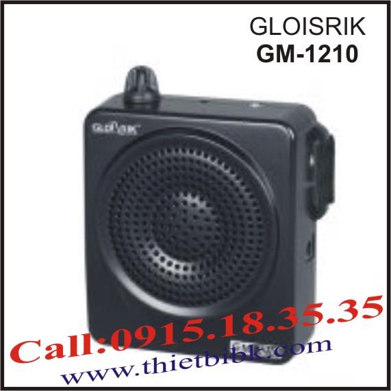 GLOISRIK-GM-1210111